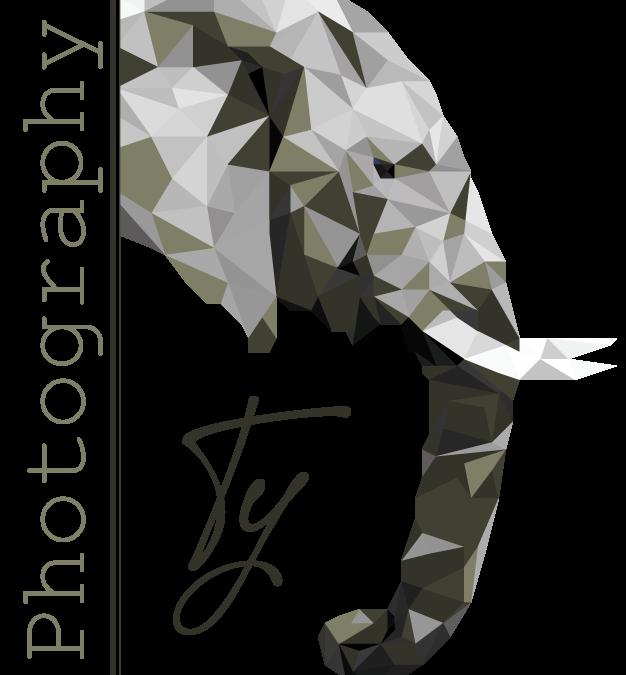 Ty Photography – Logo Design